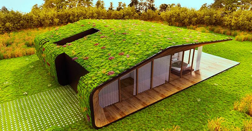 Устройство «зеленой крыши»