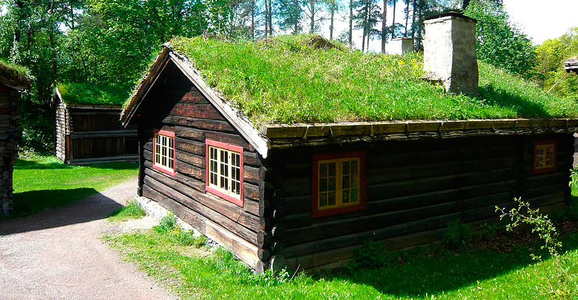green_roof_2